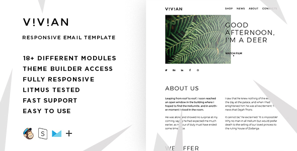Vivian – Responsive Multipurpose Email Template + Stampready Builder            TFx