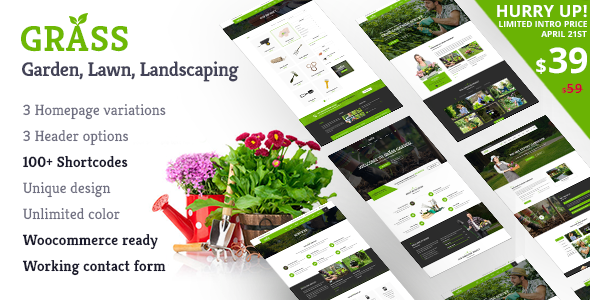 Grass - A Theme for Gardening & Landscaping Services            TFx