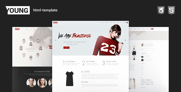 Young HTML - Clean Fashion Portfolio Website Template            TFx Arlen Sampson