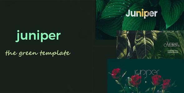 Juniper - Creative Multi Purpose Template            TFx Meade Huey