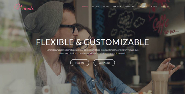 Monali - Responsive WordPress Theme - Technology WordPress TFx Isaiah Swithin