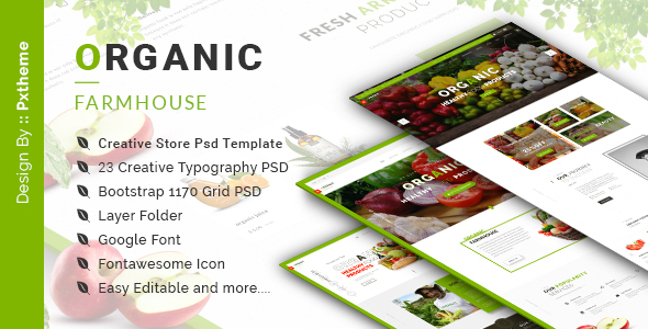 Organic Store PSD Template - Food Retail TFx Katsuo Gage