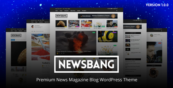 Newsbang - WordPress News Magazine Blog Theme - Blog / Magazine WordPress TFx Larrie Silver