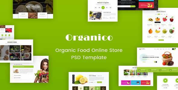 Origanico - Organic Online Store PSD Template - Food Retail TFx Celeste Stacey