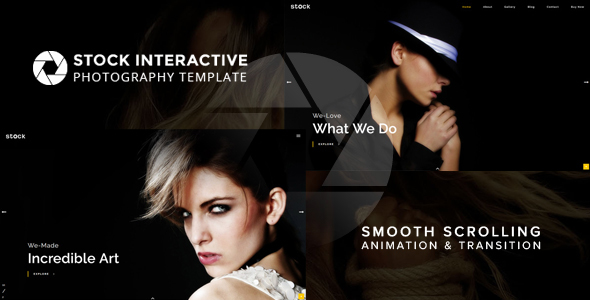 Stock | Interactive Photography Template - Photography Creative TFx Grey Dendorcym