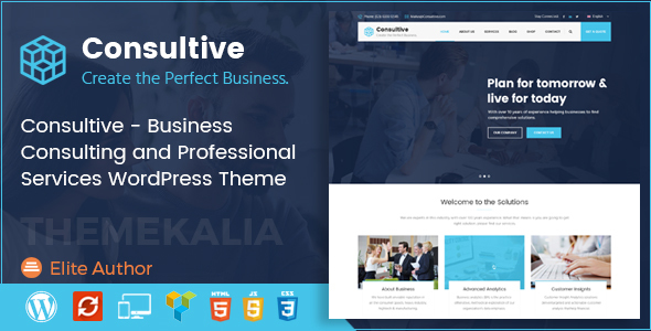 Consultive - Business Consulting WordPress Theme - Business Corporate TFx Asher Vivian
