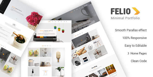 Felio - Portfolio HTML Template - Portfolio Creative TFx Hale Herbert