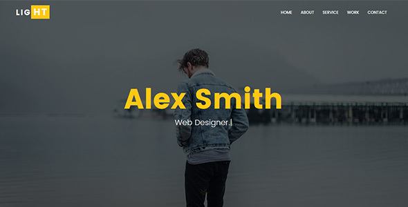 Light - Personal Portfolio Template - Personal Site Templates TFx Terry Blair