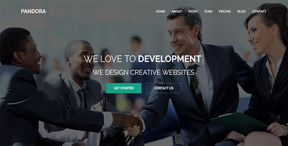 Pandora - One Page MultiPurpose HTML5 Template - Corporate Site Templates TFx Dian Woody