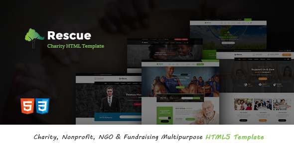 Rescue - Charity, Nonprofit, NGO & Fundraising Multipurpose HTML5 Template - Nonprofit Site Templates TFx Chaz Earnest