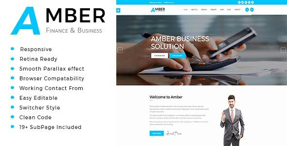 Amber - Business Consulting and Professional Services HTML Template - Business Corporate TFx Herbie Wolf