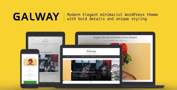 Galway - A Clean Minimalist WordPress Blog Theme - Blog / Magazine WordPress TFx Alphonso Putra