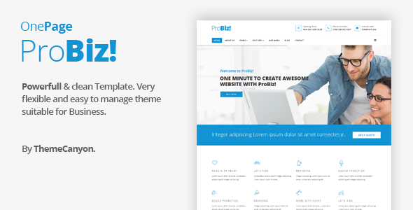 Probiz - Onepage Creative Multipurpose Joomla Template - Joomla CMS Themes TFx Saburou Jerrard