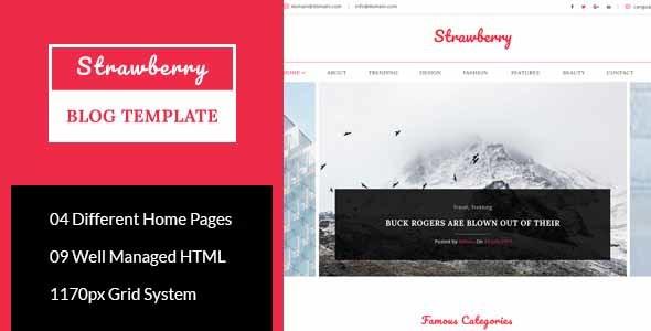 Strawberry - Minimal Blog HTML Template            TFx Haruto Sylvester