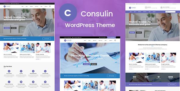 Consulin - Consultant Finance WordPress Theme            TFx Riku Morty