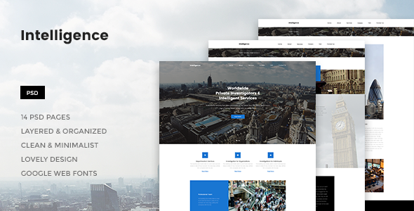Intelligence - Individual & Corporate Investigations PSD Template            TFx Napier Poghos
