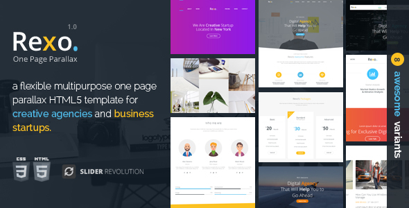 Rexo – One Page Parallax            TFx Patsy Winslow