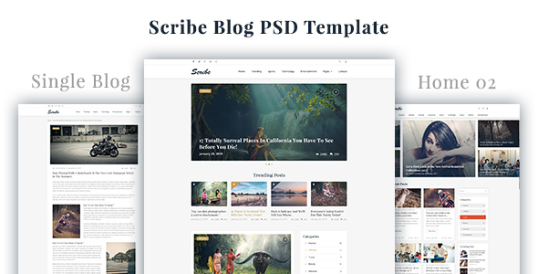Scribe - Blog PSD Template            TFx Lachlan Zackary
