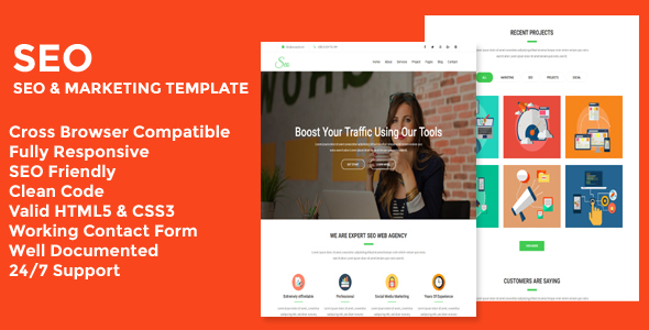 Seo - Seo & Marketing Business Template            TFx Chuck Taylor