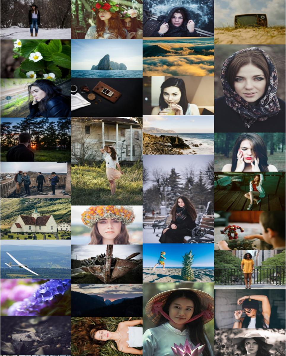Image Gallery WordPress Plugin TMT Sonnie York