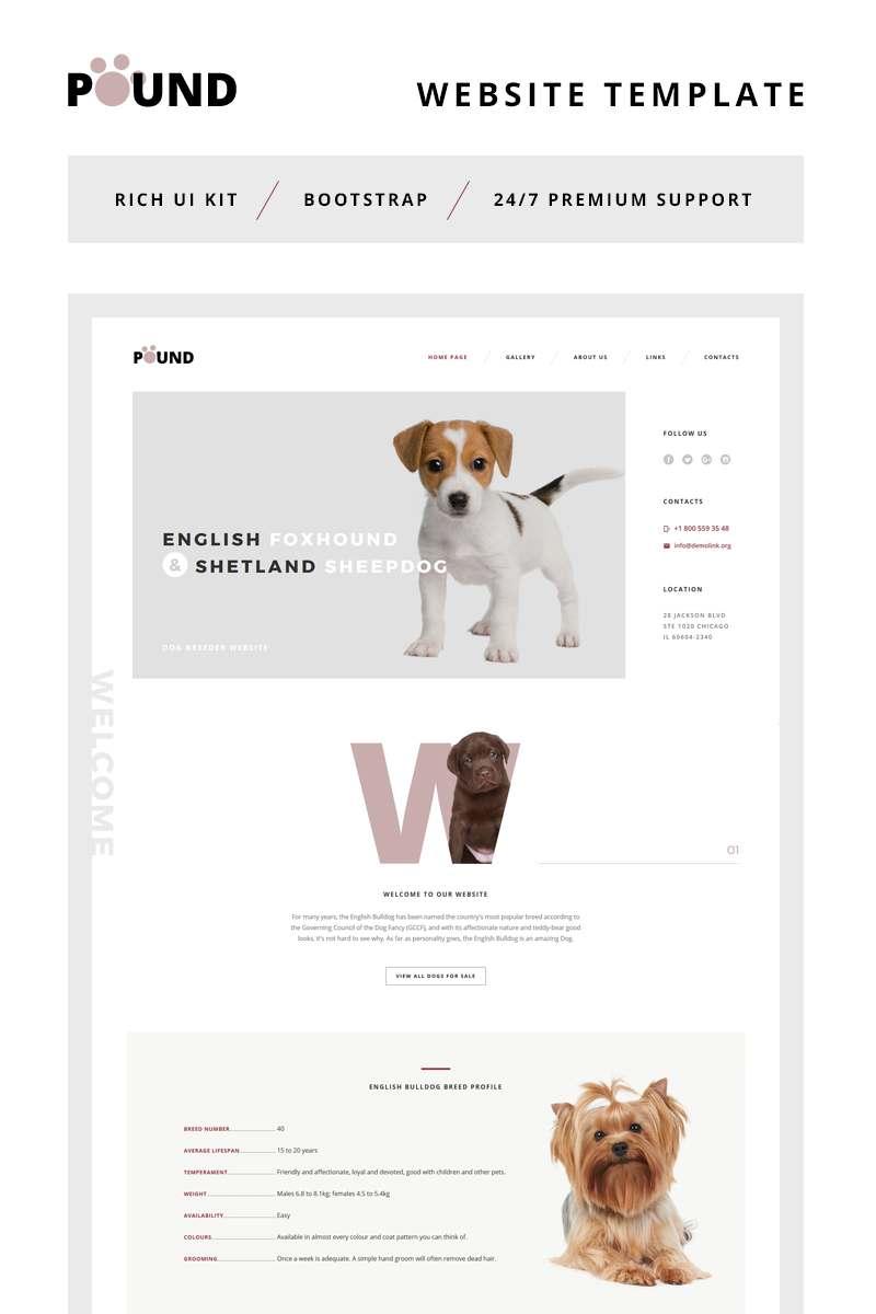 Pound - Animal Care Responsive Website Template TMT Clancy Warrick
