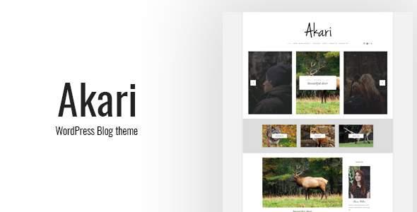 Akari - Elegant WordPress Blog Theme            TFx Devon Tommy