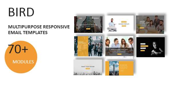 Bird - Multipurpose Responsive Email Template With Online StampReady Builder Access            TFx Lacy Gorou