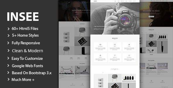 Insee - Minimal Portfolio Template            TFx Tlaloc Wilfred