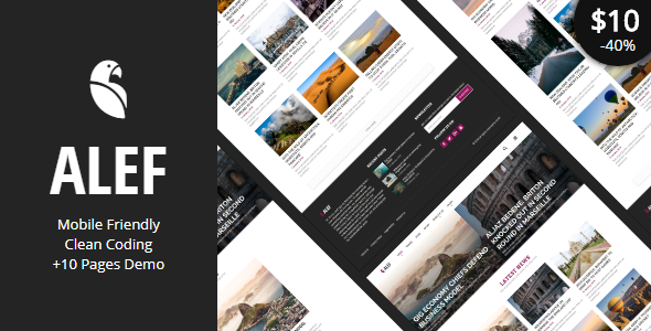ALEF – Multipurpose Personal Blog Template            TFx Noboru Booker