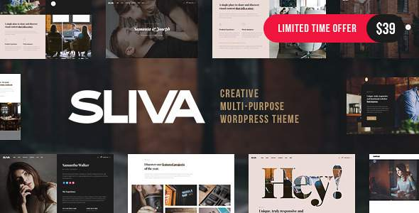 Sliva - Responsive Multi-Purpose Theme            TFx Justy Wawatam