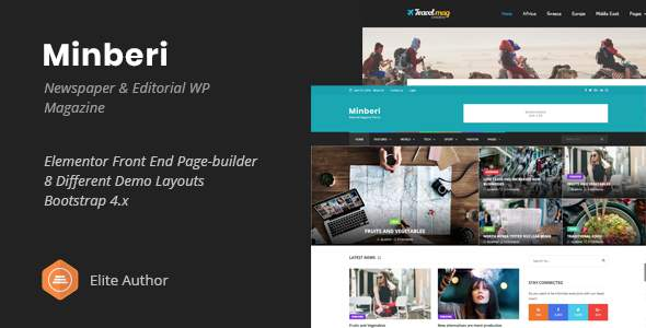 Minberi - Newspaper & Editorial WordPress Theme            TFx Rickie Booker