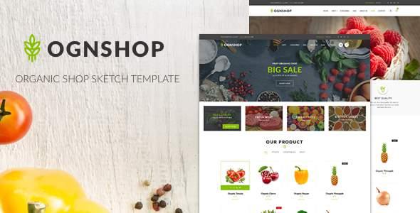 Ognshop - Organic Food & Health Products Sketch Template            TFx Carey Hadyn
