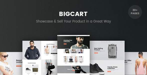 BigCart - Responsive Shopify Template (Sections Ready)            TFx Jess Haig