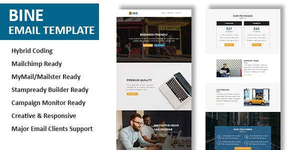 Bine – Multipurpose Responsive Email Template with Online StampReady Builder Access            TFx Albert Faron