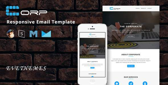 Corp – Responsive Email Template            TFx Tye Martial