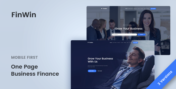 FinWin – One Page Business Finance Template            TFx Wilton Bernie