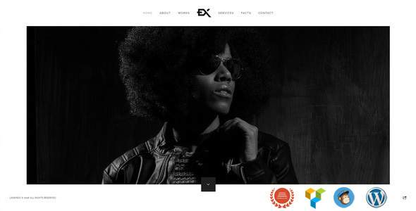 Legendo - One Page Portfolio WordPress Theme            TFx Flannery Hiram