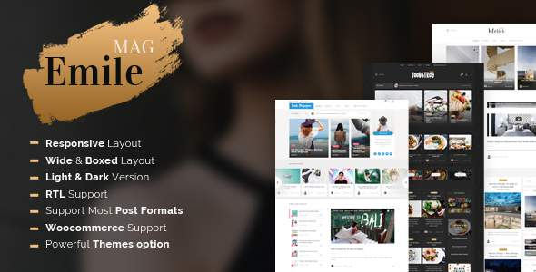 Emile - Responsive WordPress Blog Theme With Shop            TFx Angus Melvin