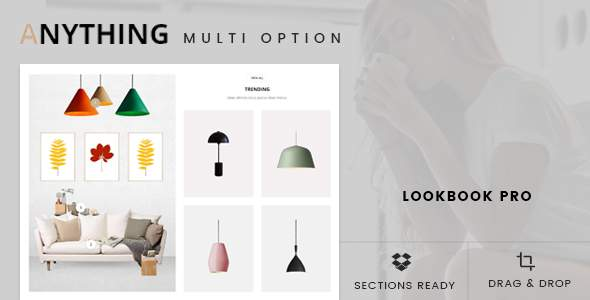 Anything - Drag & Drop Shopify Theme            TFx Harding Joyce