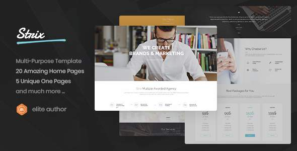 Strix - Multipurpose HTML5 Template            TFx Aqissiaq Ennis