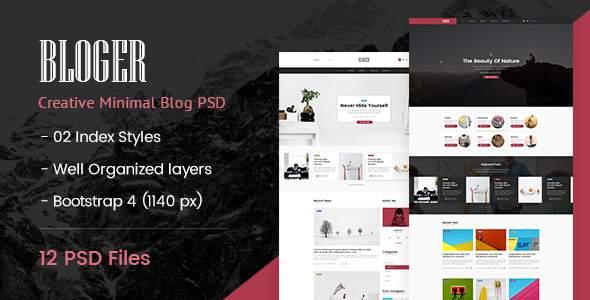 Bloger | Creative Minimal PSD Template        TFx Carson Bailey