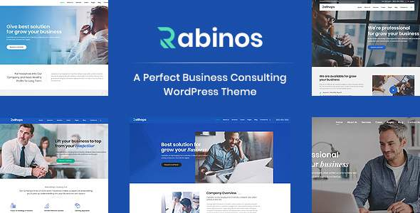 Rabinos - Business Consulting WordPress Theme        TFx Aleksandr Tatton