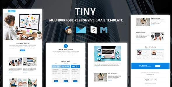 Tiny - Multipurpose Responsive Email Template        TFx Bryson Mickey