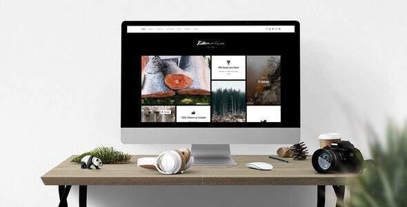 Killeen - Portfolio Showcase Drupal Theme TFx