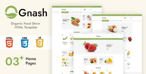 Gnash – Organic Food Store HTML Template TFx