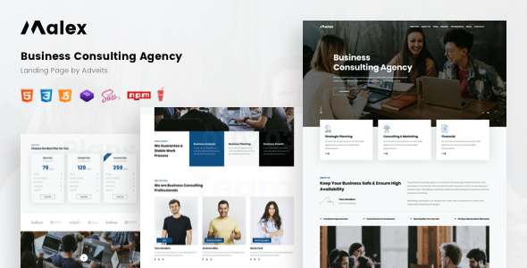 Malex - Business Consulting Agency Landing Page TFx
